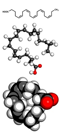 precursor: Eicosapentaenoic acid (EPA) omega-3 fatty acid, molecular model. EPA is abundant in many fish oils. Atoms are represented as spheres with conventional color coding: hydrogen (white), carbon (grey), oxygen (red)
