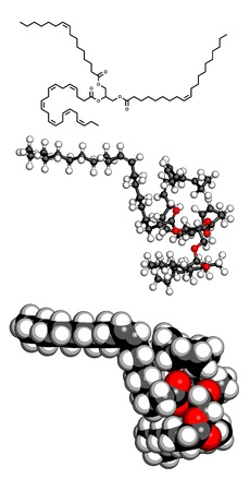 model fish: Fish oil triglyceride containing docosahexanoic acid (DHA), gadoleic acid and palmitoleic acid. Molecular model. Atoms are represented as spheres with conventional color coding: hydrogen (white), carbon (grey), oxygen (red).