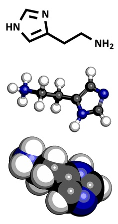 histamine: Histamine neurotransmitter, molecular model. Atoms are represented as spheres with conventional color coding: hydrogen (white), carbon (grey), nitrogen (blue)