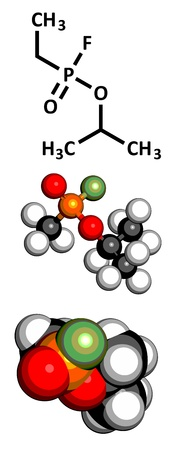 enzyme: Sarin nerve agent, molecular model. Sarin is a chemical weapon, classified as a weapon of mass destruction. Atoms are represented as spheres with conventional color coding: hydrogen (white), carbon (grey), oxygen (red), fluorine (green), phosphorus (orang