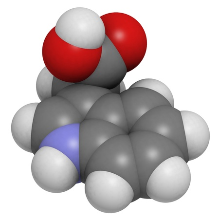 Auxin (indole-3-acetic acid, IAA) plant growth hormone, molecular model. Atoms are represented as spheres with conventional color coding: hydrogen (white), carbon (grey), oxygen (red), nitrogen (blue). photo