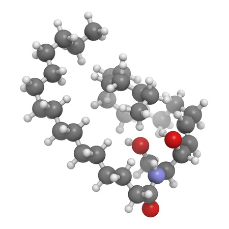 lipid: Ceramide cell membrane lipid, molecular model. Atoms are represented as spheres with conventional color coding: hydrogen (white), carbon (grey), oxygen (red), nitrogen (blue). Stock Photo
