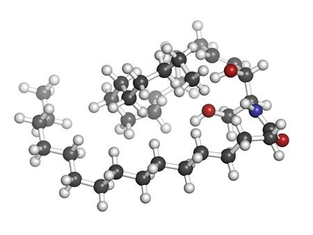 membrane cellulaire: C�ramide membrane lipidique, mod�le mol�culaire de la cellule. Les atomes sont repr�sent�s par des sph�res avec codage couleur conventionnels: l'hydrog�ne (blanc), le carbone (gris), d'oxyg�ne (rouge), l'azote (en bleu).