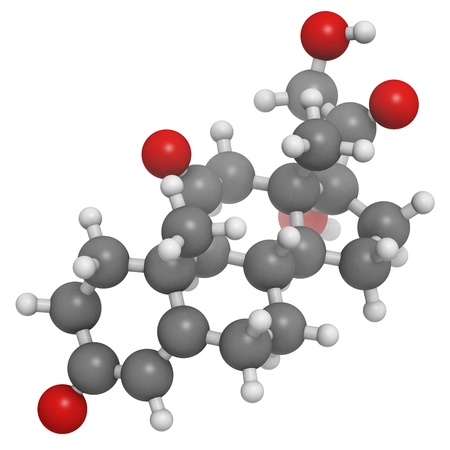 cortisone stress hormone, molecular model. Atoms are represented as spheres with conventional color coding: hydrogen (white), carbon (grey), oxygen (red)