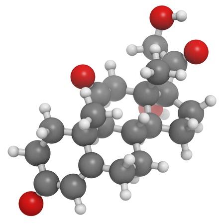 cortisone stresshormoon, moleculair model. Atomen worden als bollen met conventionele kleurcodering vertegenwoordigd: waterstof (wit), koolstof (grijs), zuurstof (rood) Stockfoto