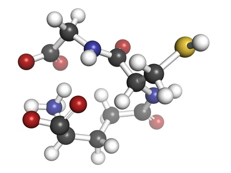 disulfide: Glutathione antioxidant, molecular model. Atoms are represented as spheres with conventional color coding: hydrogen (white), carbon (grey), oxygen (red), nitrogen (blue), sulfur (yellow)