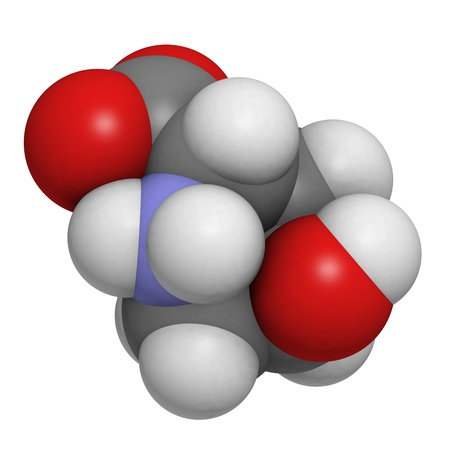 Hydroxyproline (Hyp) collagen building block, molecular model. Atoms are represented as spheres with conventional color coding: hydrogen (white), carbon (grey), oxygen (red), nitrogen (blue) Stock Photo - 19617617