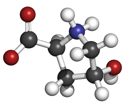 collagen: Hydroxyproline (Hyp) collagen building block, molecular model. Atoms are represented as spheres with conventional color coding: hydrogen (white), carbon (grey), oxygen (red), nitrogen (blue)