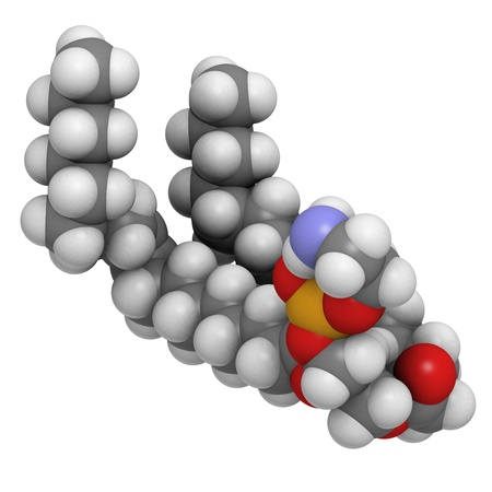 lipoprotein: Palmitoyloleoylphosphatidylethanolamine (POPE) cell membrane building block, molecular model. PE is also important in blood clotting (coagulation). Atoms are represented as spheres with conventional color coding: hydrogen (white), carbon (grey), oxygen (r Stock Photo