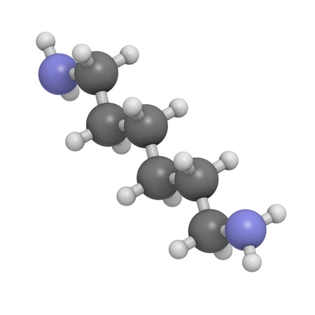 amine: Hexamethylenediamine, nylon (polyamide) building block. Atoms are represented as spheres with conventional color coding: hydrogen (white), carbon (grey), nitrogen (blue). Stock Photo