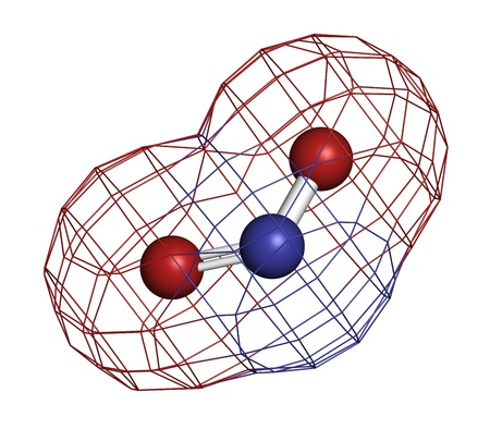 carcinogen: Nitrite (NO2-) anion. Nitrite salts are used in the curing of meat. Atoms are represented as spheres with conventional color coding: nitrogen (blue), oxygen (red). Wireframe surface.