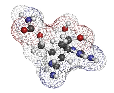 toxin: Saxitoxin  STX  paralytic shellfish toxin  PST , chemical structure  Atoms are represented as spheres with conventional color coding  hydrogen  white , carbon  grey , oxygen  red , nitrogen  blue
