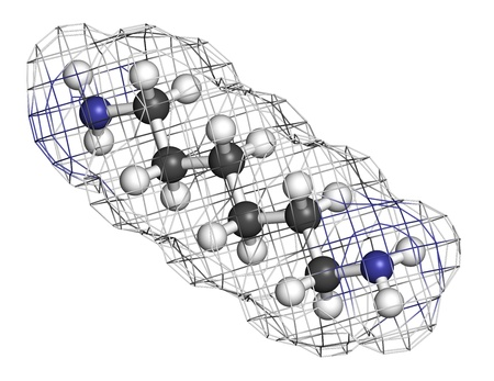 amine: Hexamethylenediamine, nylon (polyamide) building block. Atoms are represented as spheres with conventional color coding: hydrogen (white), carbon (grey), nitrogen (blue). Wireframe surface.