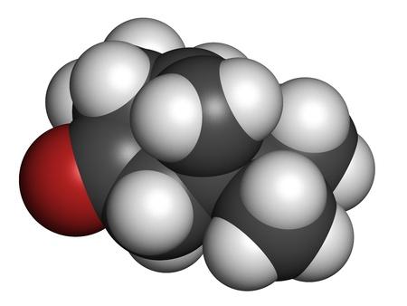 ajenjo: Thujone (alfa) mol�cula de absenta, la estructura qu�mica. Los �tomos se representan como esferas con c�digo de colores convencionales: hidr�geno (blanco), el carb�n (gris), ox�geno (roja).