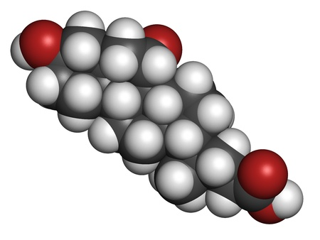Ursodiol (ursodeoxycholic acid, UDCA) gallstone treatment drug, chemical structure. Atoms are represented as spheres with conventional color coding: hydrogen (white), carbon (grey), oxygen (red) Stock Photo - 21198970