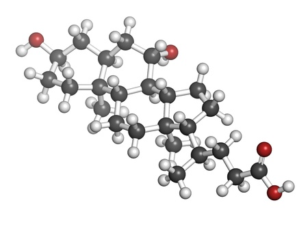 Ursodiol (ursodeoxycholic acid, UDCA) gallstone treatment drug, chemical structure. Atoms are represented as spheres with conventional color coding: hydrogen (white), carbon (grey), oxygen (red) Stock Photo - 21198971