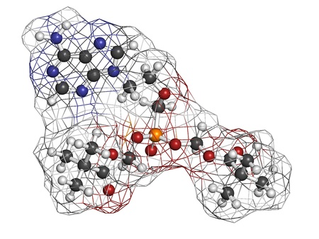 nucleotide: Adefovir dipivoxil hepatitis B and herpes simplex virus (HSV) drug, chemical structure. Atoms are represented as spheres with conventional color coding: hydrogen (white), carbon (grey), nitrogen (blue), oxygen (red), phosphorus (orange). Stock Photo