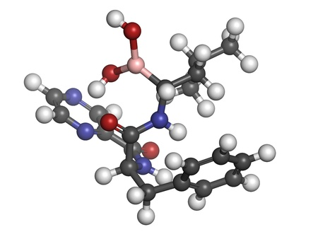 myeloma: Bortezomib cancer drug (proteasome inhibitor), chemical structure. Atoms are represented as spheres with conventional color coding: hydrogen (white), carbon (grey), nitrogen (blue), oxygen (red), boron (pink).