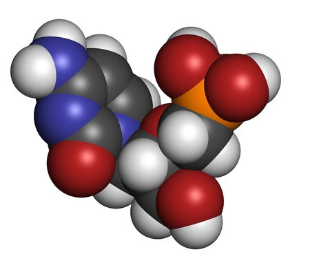smallpox: Cidofovir cytomegalovirus (CMV, HCMV) drug, chemical structure. Can probably also be used against smallpox infection. Atoms are represented as spheres with conventional color coding: hydrogen (white), carbon (grey), nitrogen (blue), oxygen (red), phosphor