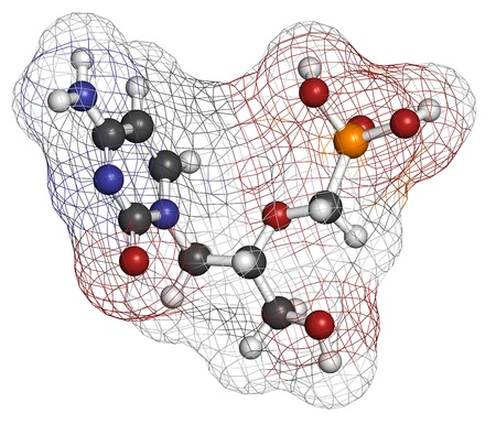 Cidofovir cytomegalovirus (CMV, HCMV) drug, chemical structure. Can probably also be used against smallpox infection. Atoms are represented as spheres with conventional color coding: hydrogen (white), carbon (grey), nitrogen (blue), oxygen (red), phosphor
