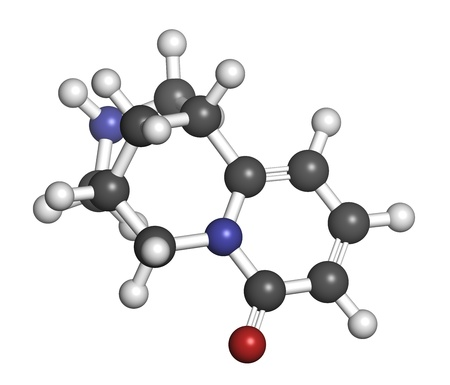 Cytisine (baptitoxine, sophorine) smoking cessation drug, chemical structure. Atoms are represented as spheres with conventional color coding: hydrogen (white), carbon (grey), nitrogen (blue), oxygen (red). photo
