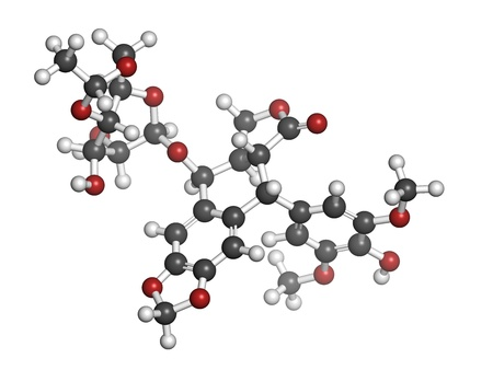 apoptosis: Etoposide cancer chemotherapy drug, chemical structure. Atoms are represented as spheres with conventional color coding: hydrogen (white), carbon (grey), oxygen (red).