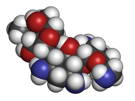 hydrogen: Gentamicin antibiotic drug (aminoglycoside class), chemical structure. Atoms are represented as spheres with conventional color coding: hydrogen (white), carbon (grey), nitrogen (blue), oxygen (red).