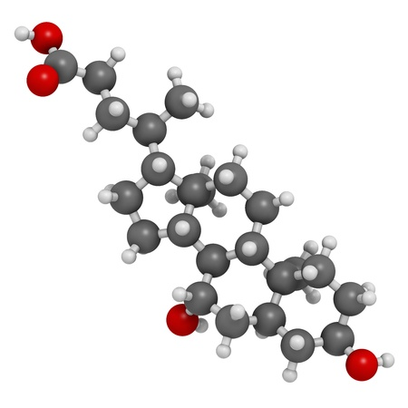 Ursodiol (ursodeoxycholic acid, UDCA) gallstone treatment drug, chemical structure. Atoms are represented as spheres with conventional color coding: hydrogen (white), carbon (grey), oxygen (red) Stock Photo - 21514175