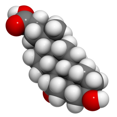 Ursodiol (ursodeoxycholic acid, UDCA) gallstone treatment drug, chemical structure. Atoms are represented as spheres with conventional color coding: hydrogen (white), carbon (grey), oxygen (red) Stock Photo - 21514174