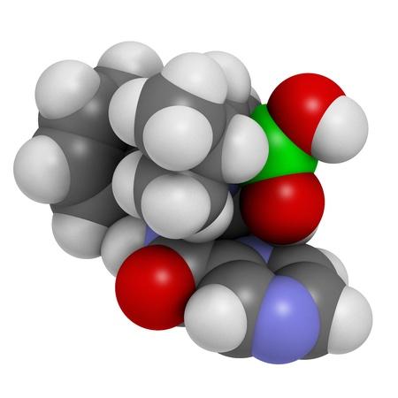 boro: Bortezomib c�ncer de las drogas (inhibidor de proteasoma), la estructura qu�mica. Los �tomos se representan como esferas con c�digo de colores convencionales: hidr�geno (blanco), el carb�n (gris), nitr�geno (azul), el ox�geno (roja), boro (verde). Foto de archivo