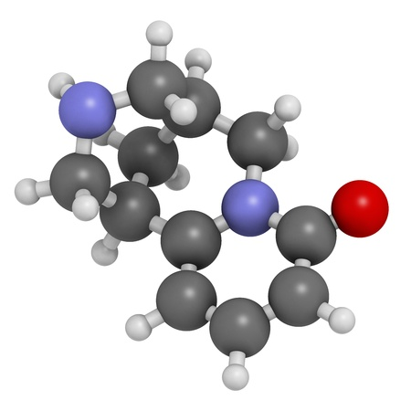 nicotinic: Cytisine (baptitoxine, sophorine) smoking cessation drug, chemical structure. Atoms are represented as spheres with conventional color coding: hydrogen (white), carbon (grey), nitrogen (blue), oxygen (red).