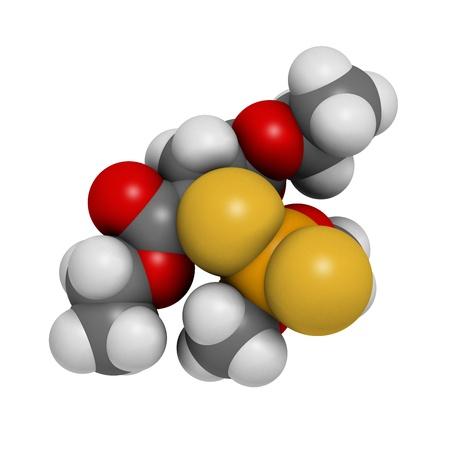 lice: Insecticida malati�n, la estructura qu�mica. Se utiliza para tratar los piojos de la cabeza, piojos del cuerpo, la sarna y en la agricultura. Los �tomos se representan como esferas con c�digo de colores convencionales: hidr�geno (blanco), f�sforo, carbono (gris), ox�geno (roja), azufre (amarillo), (naranja) Foto de archivo