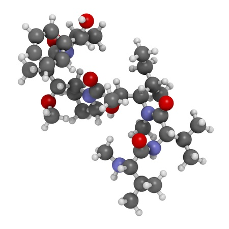 methyl: Monomethyl auristatin E (MMAE, vedotin), the cytotoxic payload of brentuximab vedotin antibody-drug conjugate. Atoms are represented as spheres with conventional color coding: hydrogen (white), carbon (grey), nitrogen (blue), oxygen (red).