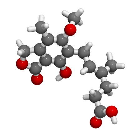 monophosphate: Mycophenolate (mycophenolic acid) immunosuppressive drug, chemical structure. Used to prevent transplant rejection and in treatment of autoimmune disease. Atoms are represented as spheres with conventional color coding: hydrogen (white), carbon (grey), ni