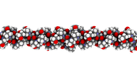Collagen model protein, chemical structure. Essential component of skin, bone, hair, connective tissue, etc. Atoms are represented as spheres with conventional color coding: hydrogen (white), carbon (grey), nitrogen (blue), oxygen (red).