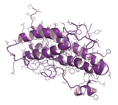 Menselijk groeihormoon (hGH, Somatotropin) molecuul. Natuurlijke hormoon dat wordt gebruikt als een geneesmiddel en als een dopingmiddel. Cartoon & wireframe representatie. Stockfoto