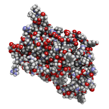 hormone: Human growth hormone (hGH, Somatotropin) molecule. Natural hormone that is used both as a drug and as a doping agent. Stock Photo