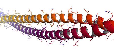 Keratine intermediaire filament, chemische structuur. Keratine is een van de belangrijkste onderdelen van de menselijke huid, haar en nagels. Cartoon & wireframe representatie. Gradient kleuren. Stockfoto