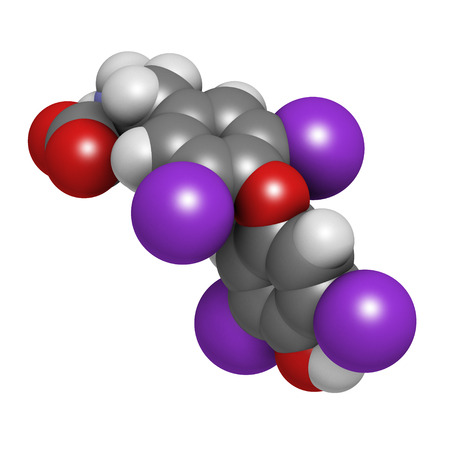 derivative: Thyroxine molecule, chemical structure. Thyroid gland hormone that plays a role in energy metabolism regulation. It is a iodine containing derivative of thyrosine. Atoms are represented as spheres with conventional color coding: hydrogen (white), carbon ( Stock Photo