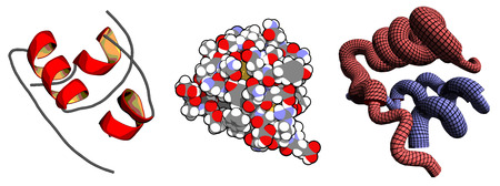 Insulin peptide hormone, chemical structure. Important drug in treatment of diabetes. Multiple representations.