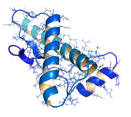 encephalopathy: Human prion protein (hPrP), chemical structure. Associated with neurogedenerative diseases, including kuru, BSE and Creutzfeldt-Jakob. Cartoon & wireframe representation. N-term (blue) to C-term (teal) gradient coloring. Stock Photo