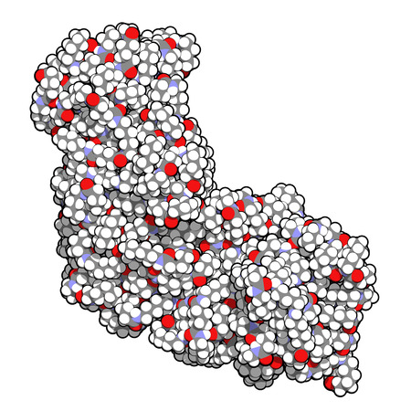 amide: Nylon (nylon-6,6) plastic polymer, chemical structure. Atoms are represented as spheres with conventional color coding: hydrogen (white), carbon (grey), oxygen (red), nitrogen (blue) Stock Photo