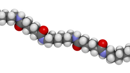 amide: Nylon (nylon-6,6) plastic polymer, chemical structure - linear fragment (detail). Atoms are represented as spheres with conventional color coding: hydrogen (white), carbon (grey), oxygen (red), nitrogen (blue)