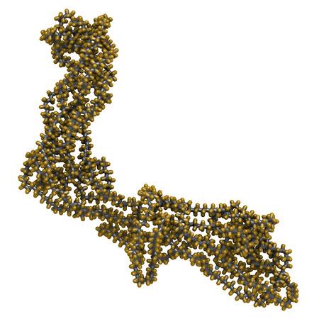 antiaderente: Politetrafluoroetilene (PTFE) polimero, struttura chimica. Usato come lubrificante e in pentole antiaderenti. Gli atomi sono rappresentati come sfere con convenzionale codifica a colori: idrogeno (bianco), carbonio (grigio), fluoro (oro)