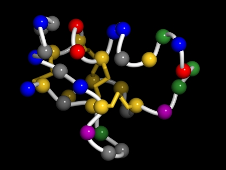venom: Chlorotoxin scorpion toxin. Peptide toxin present in deathstalker scorpion venom. Blocks chloride channels. Pearls on a string model (each pearl is 1 residue). Residue coloring: red (Glu, Asp), blue (Lys, Arg, His), gold (Met, Cys), green (Asn, Gln, Ser,  Stock Photo