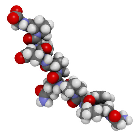coeliac: Gliadin derived peptide. Immunogenic breakdown product of gliadin (gluten), playing an essential role in celiac disease. Atoms shown as spheres with conventional color coding: hydrogen (white), carbon (grey), oxygen (red), nitrogen (blue).