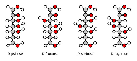 Common D-ketohexose sugars: psicose, fructose, sorbose, tagatose. Fischer-like projections. Illustration