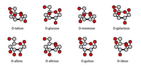 glycemic: D-aldohexose sugars: allose, altrose, glucose, mannose, gulose, idose, galactose, talose. Haworth-like projections. Illustration