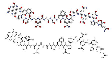 あみどグリアジン (グルテン) ペプチド フラグメント、化学構造。グリアジンはセリアック病主要アレルゲンの 1 つです。骨格式、2 つの表現。
