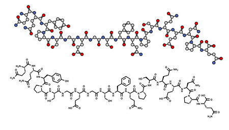 Deamidated gliadin (gluten) peptide fragment, chemical structure. Gliadin is one of the principal allergens responsible for celiac disease. Skeletal formula, two representations.